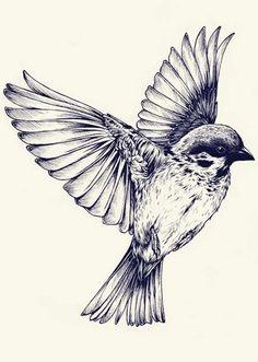 Sparrow Tattoo Idea - Tattoo Shortlist