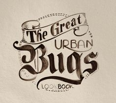 Urban Bugs by Antonio Rodrigues Jr, via Behance