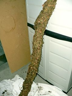 Picture of How to Make a Fake Tree Branch for Your Reptile