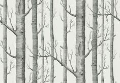 Обои Cole & Son New Contemporary 2 69/12147 Размер: 0,52x10,05 м Повтор рисунка:72 см Бренд: Cole & Son Коллекция: New Contemporary 2 Страна: Англия Основа: Флизелин Тематика: Деревья Артикул: 69/12147 Цена: 4 950р.