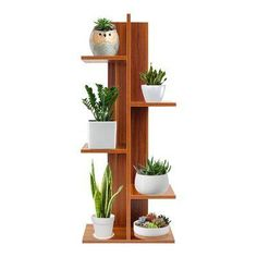 Idea Of Making Plant Pots At Home // Flower Pots From Cement Marbles // Home Decoration Ideas – Top Soop Wooden Plant Stands, Flower Stands, Decor, Bookcase, Diy Home Decor, Living Room Plants, Woodworking Projects, Plant Shelves, House Plants Decor