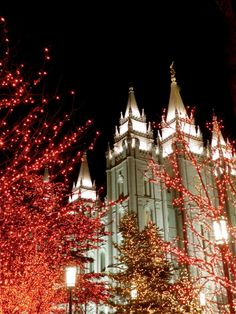 If you've never been to Temple Square in Salt Lake City, UT, you are missing out. If you've never been to Temple Square to see the Christmas. Mormon Temples, Lds Temples, Tabby Kittens For Sale, Lds Temple Pictures, Temple Square, Salt Lake Temple, Led Christmas Lights, Concept Art Gallery, Lds Church