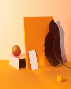 Gather Journal - David Abrahams Photography Creative still life Food photography