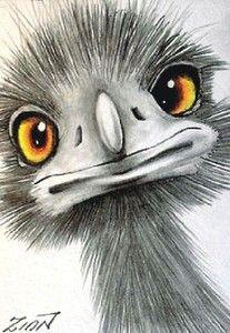 "Aceo  Original    ""EMU #4""            pencil  ZINN"