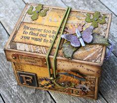 france papillon: boîte