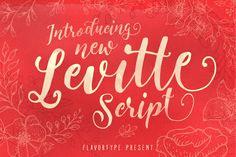 Handwritten text calligraphy lettering vector format stock vector