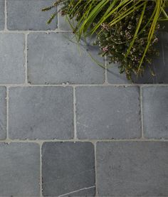 Our Neranjo Limestone Seasoned flagstones have a rich, warm colour reminiscent of a West Country farmhouse. Ideal for interiors and exteriors. Outdoor Paving, Tiles For Sale, Limestone Flooring, Natural Foundation, Tile Showroom, Flagstone, Commercial Interiors, Dream Garden, Warm Colors
