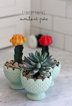 Chalky Finish Succulent Containers. #chalkyfinish