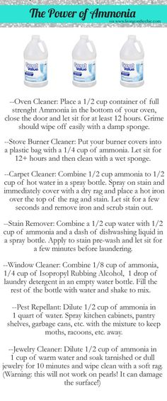 How to Clean with Ammonia - via Living on the Chic