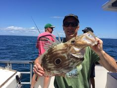 John dory would be one of the tastiest fish in the sea