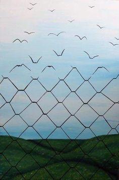 Fence, birds, freedom
