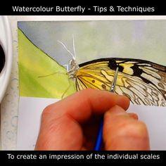 Watercolor Video, Watercolour Flowers, Watercolor Tutorials, Watercolor Techniques, Painting Tutorials, Painting Techniques, Watercolor Paintings, Butterfly Painting, Butterfly Watercolor