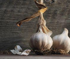 Garlic. Fresh from the farm market @restaurant_pearlmorissette Garlic, Restaurant, Fresh, Instagram, Restaurants, Supper Club, Dining Room