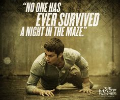 no one has ever survived a night in the maze