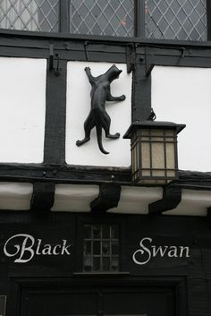 The York Cat Trail is dotted with lots of cat sculptures placed on buildings all over York, England York England, London England, Cat Diseases, Street Art, North Yorkshire, Yorkshire Dales, England And Scotland, English Countryside, British Isles