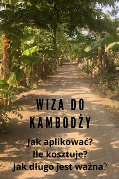 wiza-do-kambodzy Phnom Penh, Movie Posters, Movies, Blog, 2016 Movies, Film Poster, Films, Popcorn Posters, Blogging