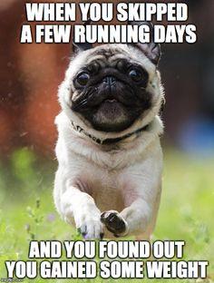 #pugrun #runningmeme #lazyday #skippingrunning