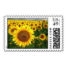 Summer Sunflowers Postage