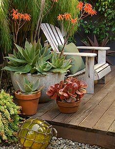 small outdoor space solution for balcony/unit. 1 cool chair and few pots with succulents -