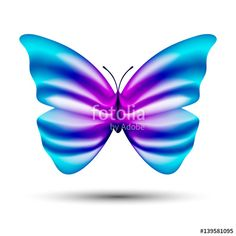 abstract vector butterfly isolated on white background - Buy this stock vector and explore similar vectors at Adobe Stock Butterflies, Abstract, Summary, Butterfly