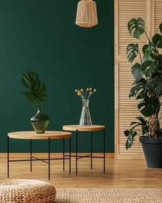 34 Fabulous Green Interior Decoration Ideas to Wow Living Room Green, Green Rooms, Home Living Room, Living Room Decor, Bedroom Decor, Living Room Colors, Bedroom Colors, Home Design, Home Interior Design