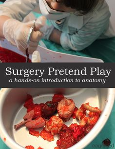 Surgery Pretend Play   A hands on introduction to anatomy   eager Ed