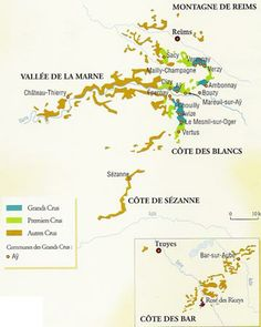 CARTE-coteaux-champenois.jpg (360×450)