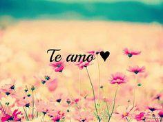 Te Amo. Por el simple y complicado gusto de hacerlo :) #RegalaFlores #AmorDeMisAmores