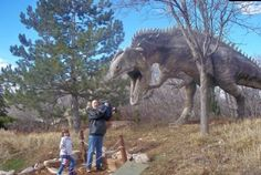 Utah is one of the best places in the United States for dinosaur lovers to find fossils, both in museums and in nature. Here are some of the best places to find dinosaurs throughout the state of Utah.