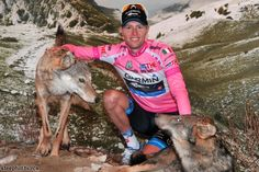 This really happened.  It's too awesome to be forgotten.  Giro d'italia 2012