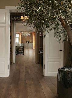 Love the doors, views through interconnecting rooms and the floor