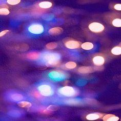 Aubergine lights