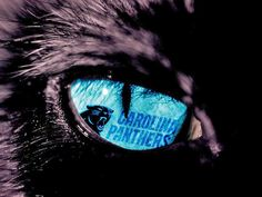 Eye of The Panther!!