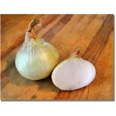 Trademark Fine Art Yellow Onions Canvas Wall Art by Michelle Calkins, Size: 35 x 47, Multicolor