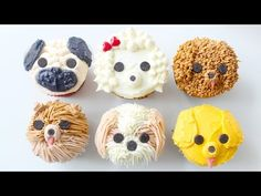 DIY DOG CUPCAKES - Pug, Pomeranian, Golden Retriever, Shih Tzu, Labradoodle & Poodle | RECIPE - YouTube