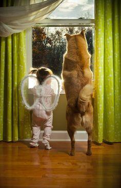A amizade perfeita entre bebês e cachorros - 66 fotos que comprovam a amizade entre bebês e cachorros - taofeminino.com.br