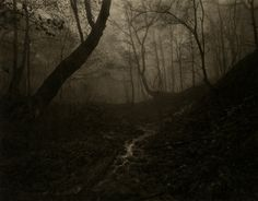 Takeshi Shikama | BWGallerist : Black and White Fine Art Photography