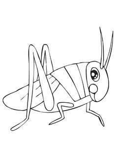 Grasshopper Coloring Page 0002 2 coloring page Free Printable