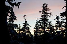Scott & Scott Architects- Alpine Cabin sunset