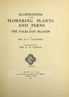 Illustrations of the flowering plants and ferns of the Falkland Islands, - Biodiversity Heritage Library