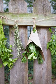 Learn how easy it can be to enjoy the flavor of your herbs all year round with this simple, DIY guide to drying your herbs.