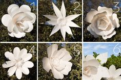 Giant Paper Flowers Patterns by AvantiMorochaDIYs on Etsy