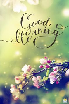 Good morning image for posting. Good Morning Picture Messages, Good Morning Friends Images, Latest Good Morning Images, Good Morning Beautiful Pictures, Beautiful Morning Messages, Good Morning My Friend, Morning Quotes Images, Morning Greetings Quotes, Happy Morning