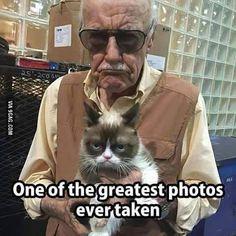 Grumpy Stan Lee