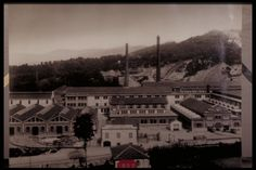 view of the plant - 1932 -