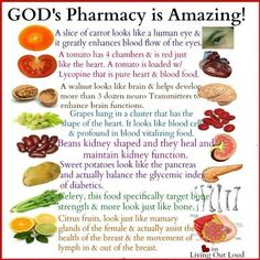 You need more whole- food nutrition. Research shows that Juice Plus+ delivers fruit and vegetable nutrition you need to maintain a healthy diet. Learn more today. Health And Nutrition, Health And Wellness, Health Tips, Health Benefits, Zinc Benefits, Health Recipes, Health Articles, Arthritis Remedies, Diarrhea Remedies