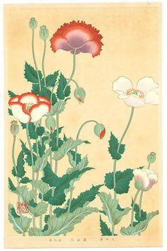 Ogata Korin: Poppies - Rimpa School Series - Artelino