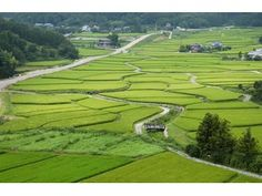 tashibu-no-syou #japan #oita Kumamoto, Kyushu, Oita, Kagoshima, Nagasaki, Fukuoka, Miyazaki, Wabi Sabi, Fields