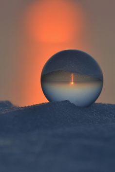 Spot Orange  (via wonderous-world)