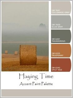 Check out how easy it is for you to create palettes of accent paint colors, from your own photos, with the help of Sherwin-Williams' free, online ColorSnap tool. Bedroom Wall Colors, Accent Wall Bedroom, Room Paint Colors, Bedroom Color Schemes, House Color Palettes, Orange Color Palettes, Paint Palettes, Rust Color Paint, Rust Color Schemes
